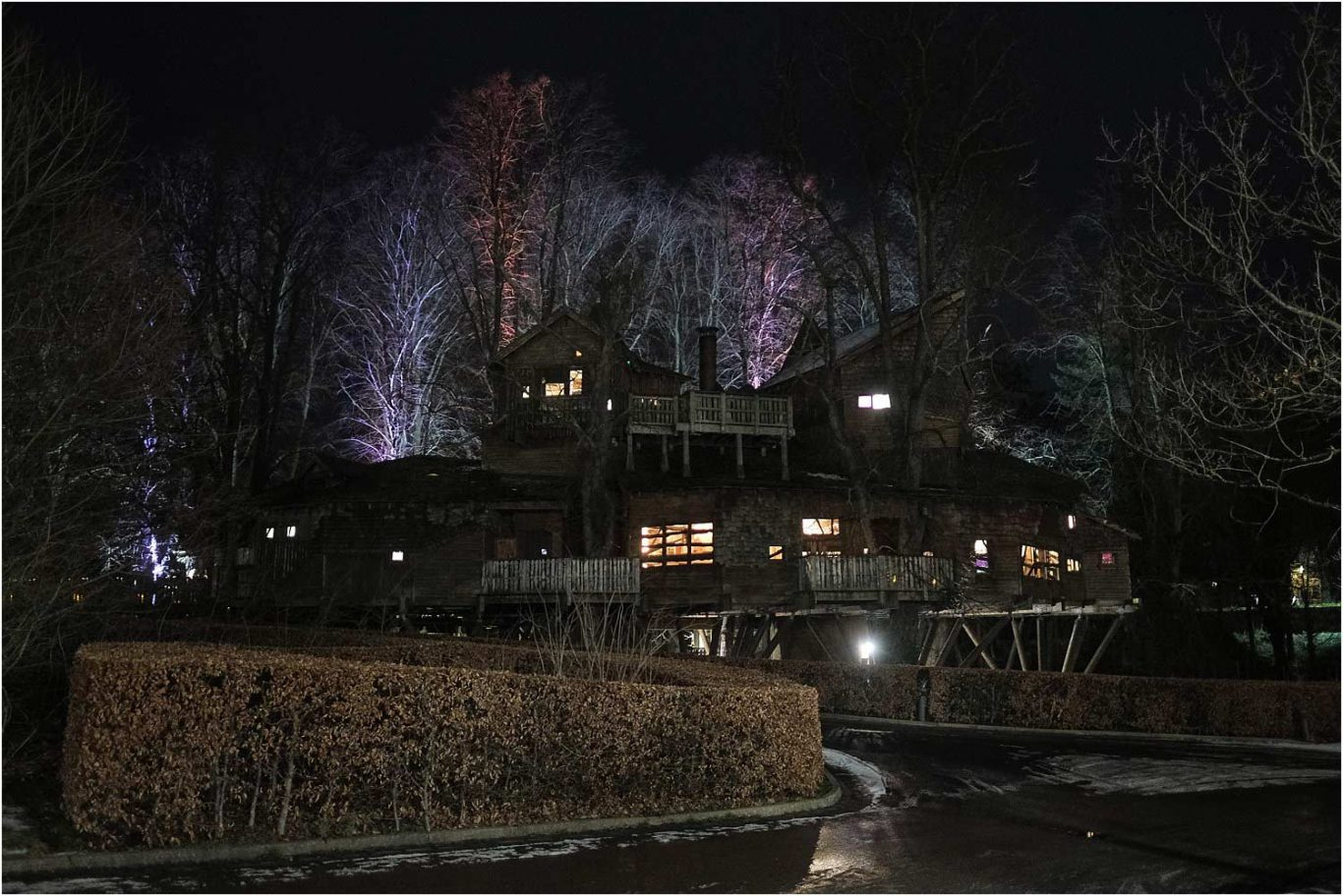 Alnwick Treehouse at Night